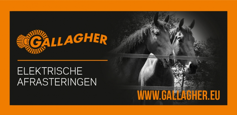 galagher 2
